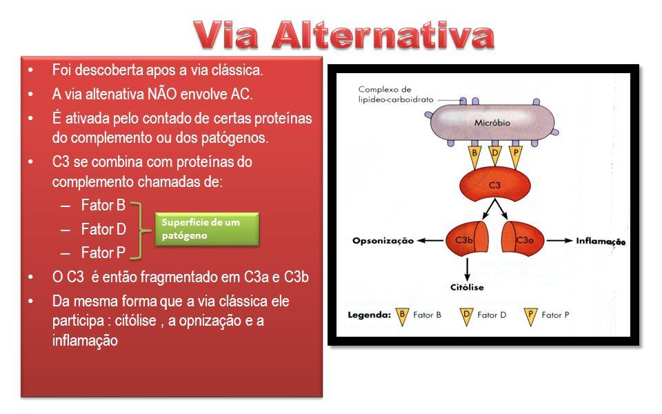 Via Alternativa Foi descoberta apos a via clássica.