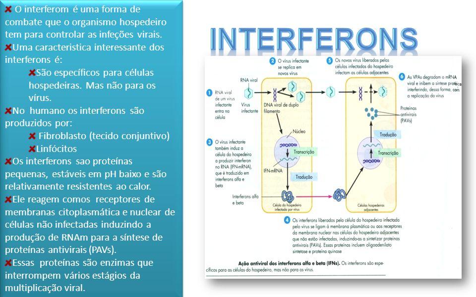 O interferom é uma forma de combate que o organismo hospedeiro tem para controlar as infeções virais.