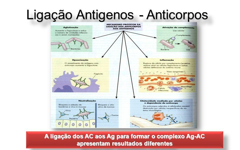 Ligação Antigenos - Anticorpos