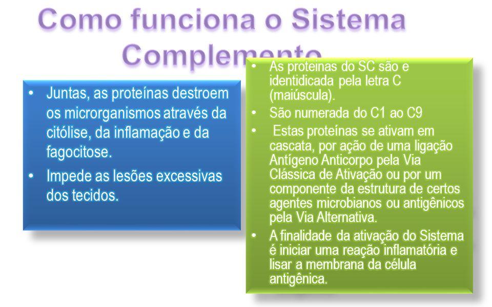 Como funciona o Sistema Complemento