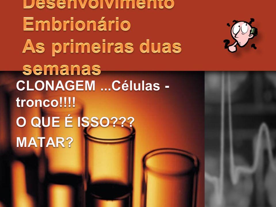 CLONAGEM ...Células -tronco!!!! O QUE É ISSO MATAR