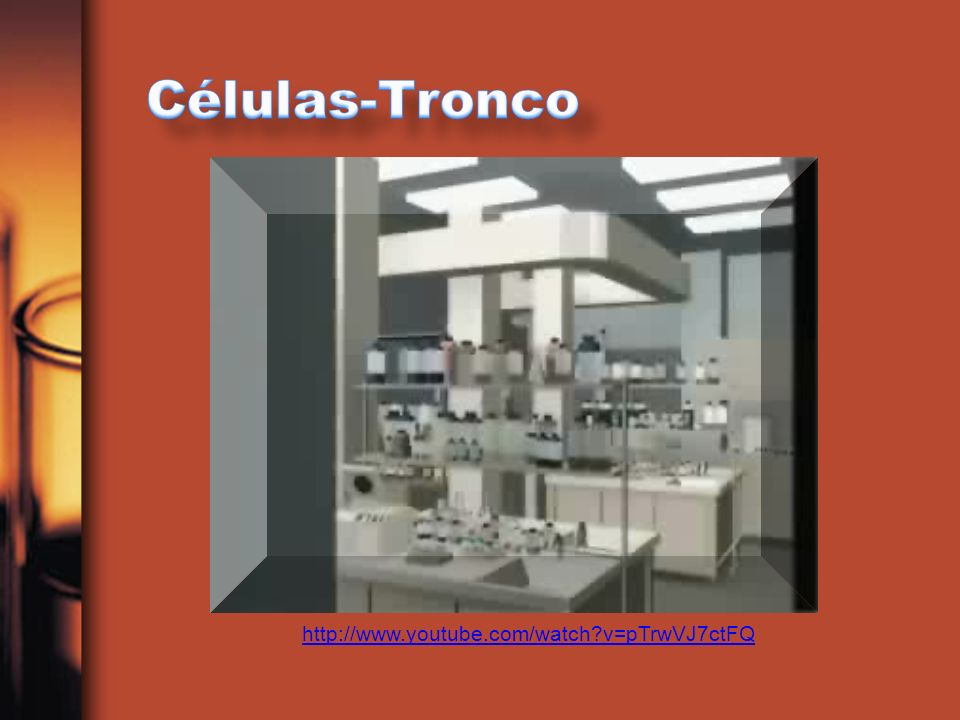 Células-Tronco http://www.youtube.com/watch v=pTrwVJ7ctFQ