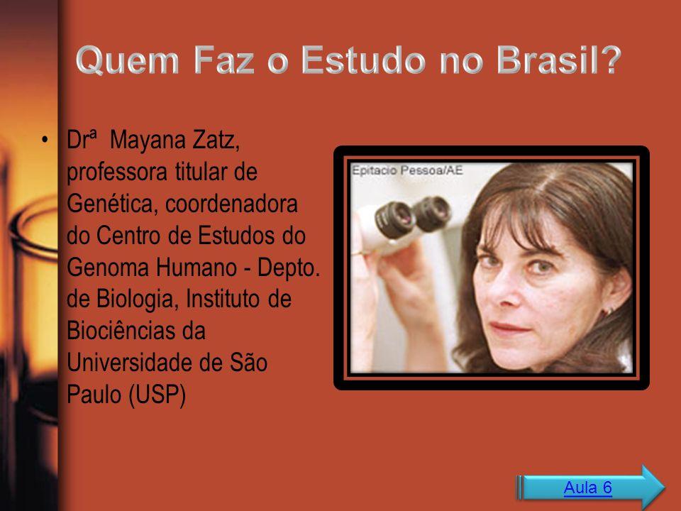 Quem Faz o Estudo no Brasil