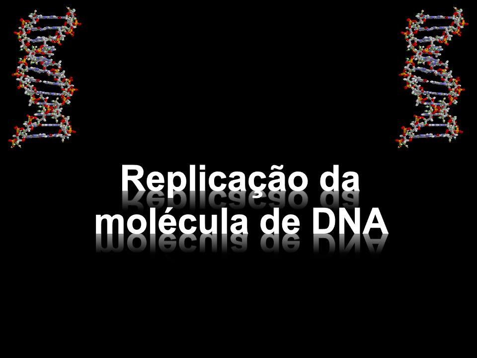 Replicação da molécula de DNA