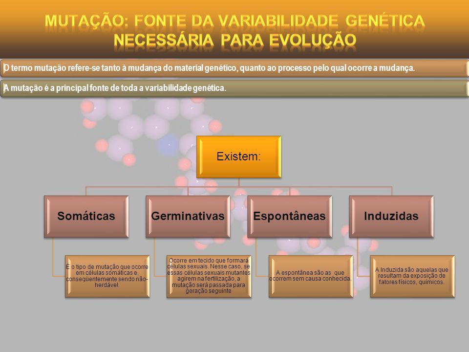 Mutação: fonte da variabilidade genética necessária para evolução