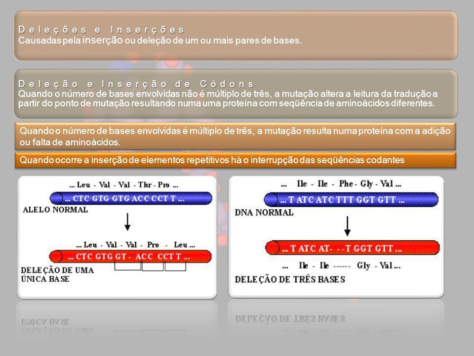 Deleções e Inserções Causadas pela inserção ou deleção de um ou mais pares de bases.