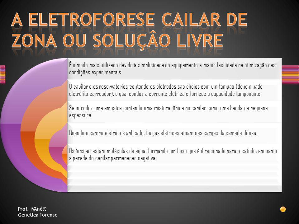 A ELETROFORESE CAILAR DE ZONA OU SOLUÇÂO LIVRE
