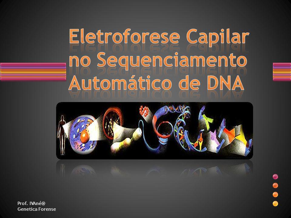 Eletroforese Capilar no Sequenciamento Automático de DNA