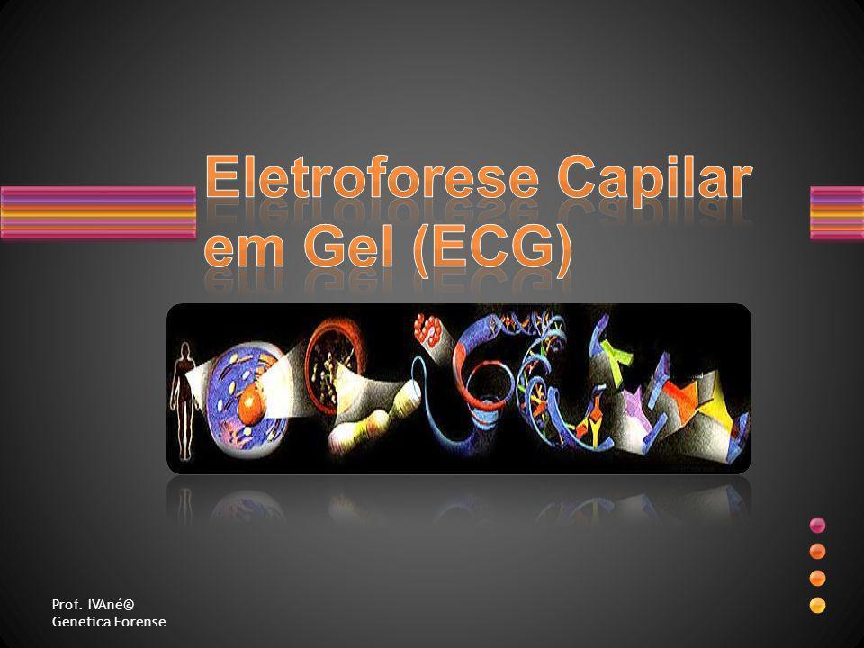 Eletroforese Capilar em Gel (ECG)