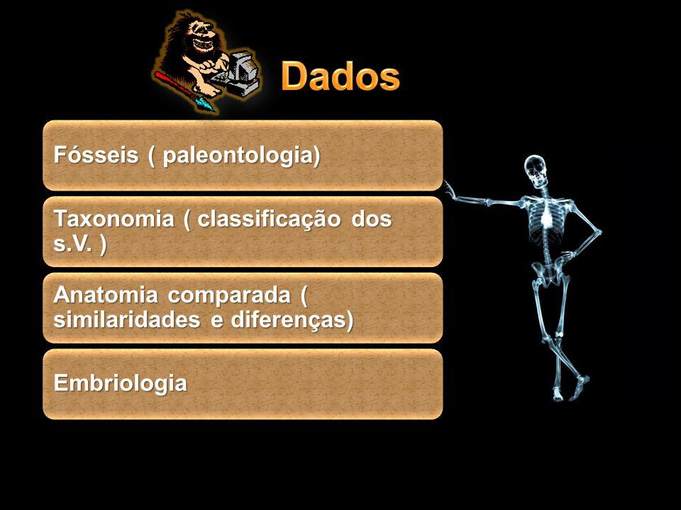 Dados Fósseis ( paleontologia) Taxonomia ( classificação dos s.V. )