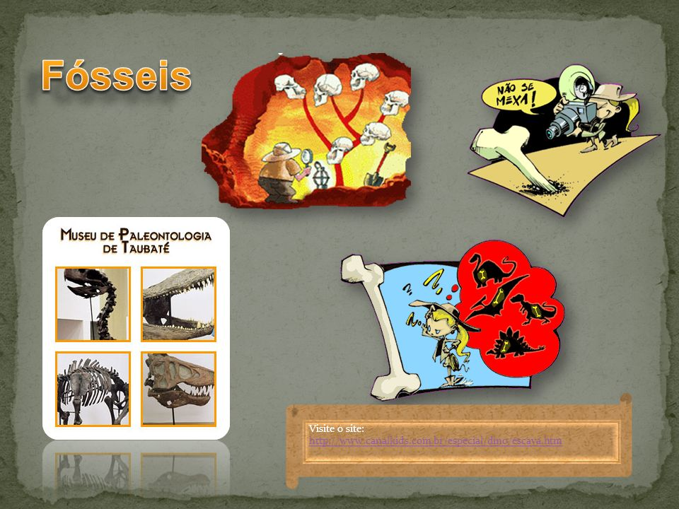 Fósseis Visite o site: http://www.canalkids.com.br/especial/dino/escava.htm