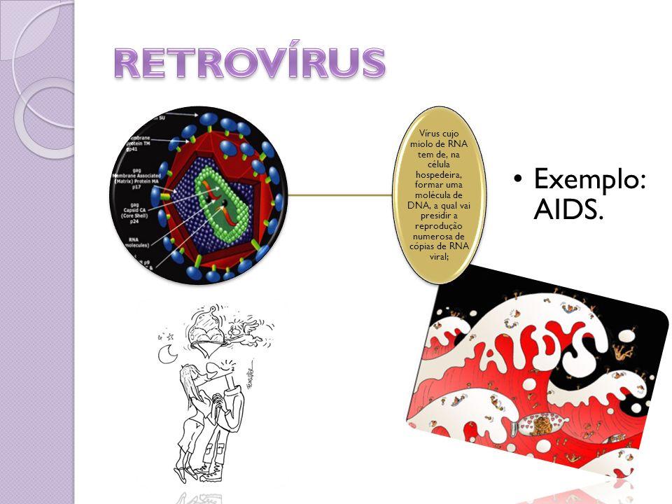 RETROVÍRUS Exemplo: AIDS.