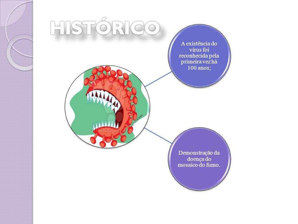 A existência do vírus foi reconhecida pela primeira vez há 100 anos;