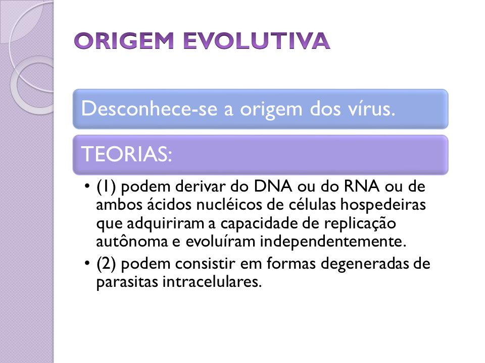 ORIGEM EVOLUTIVA Desconhece-se a origem dos vírus. TEORIAS: