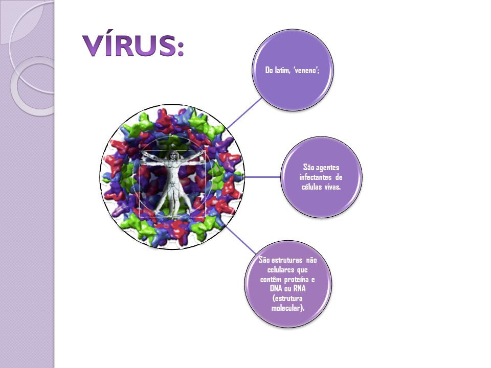 São agentes infectantes de células vivas.