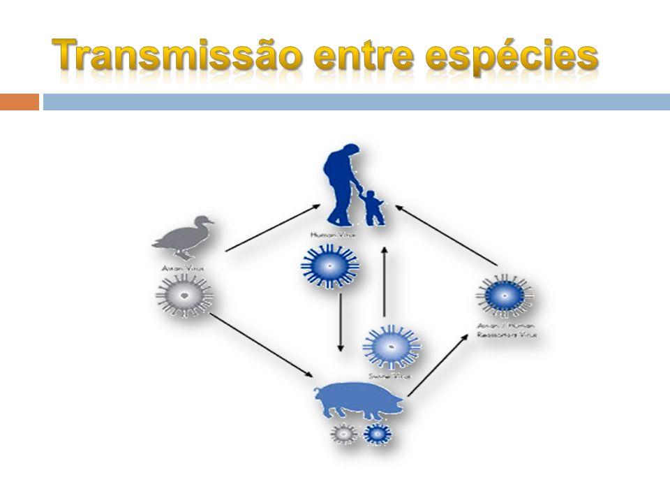 Transmissão entre espécies