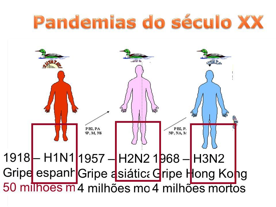 Pandemias do século XX 1957 – H2N2 Gripe asiática 4 milhões mortos