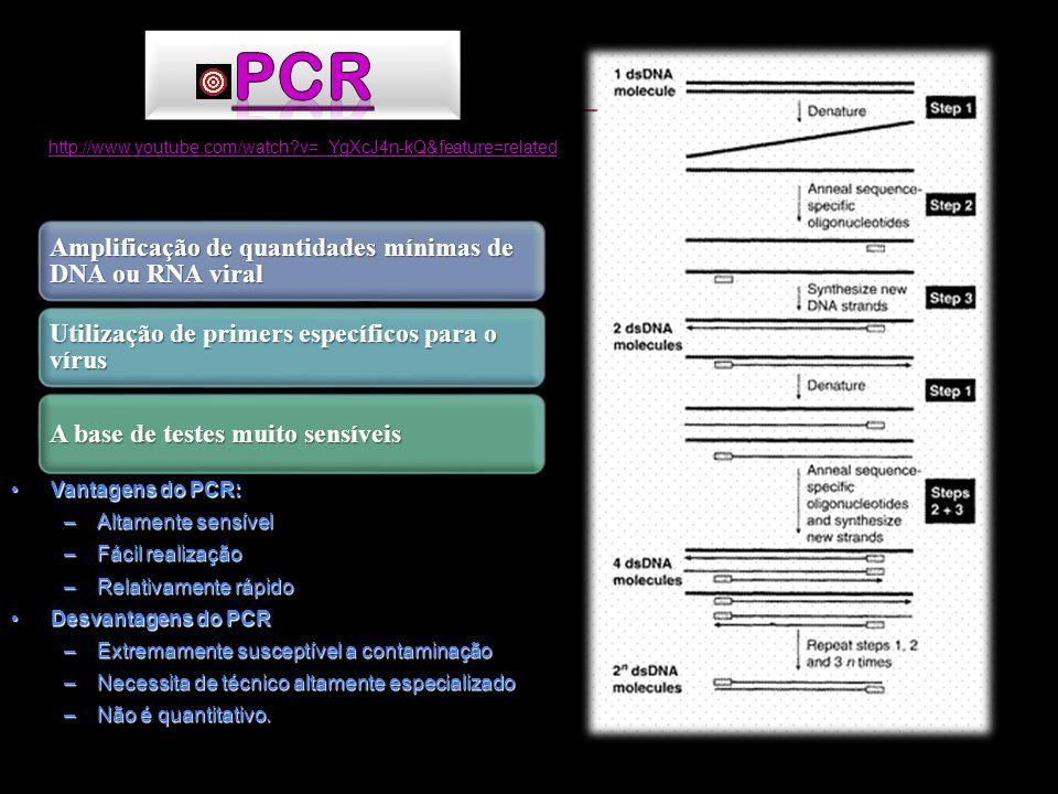 PCR Vantagens do PCR: Altamente sensível Fácil realização