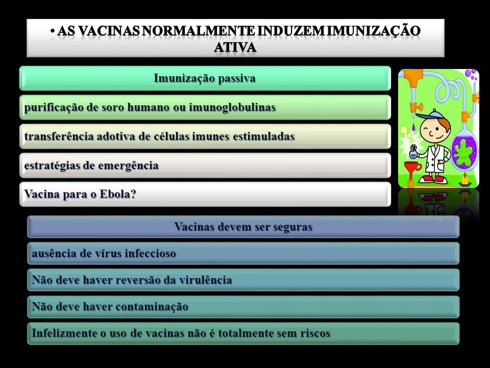 As vacinas normalmente induzem imunização ativa