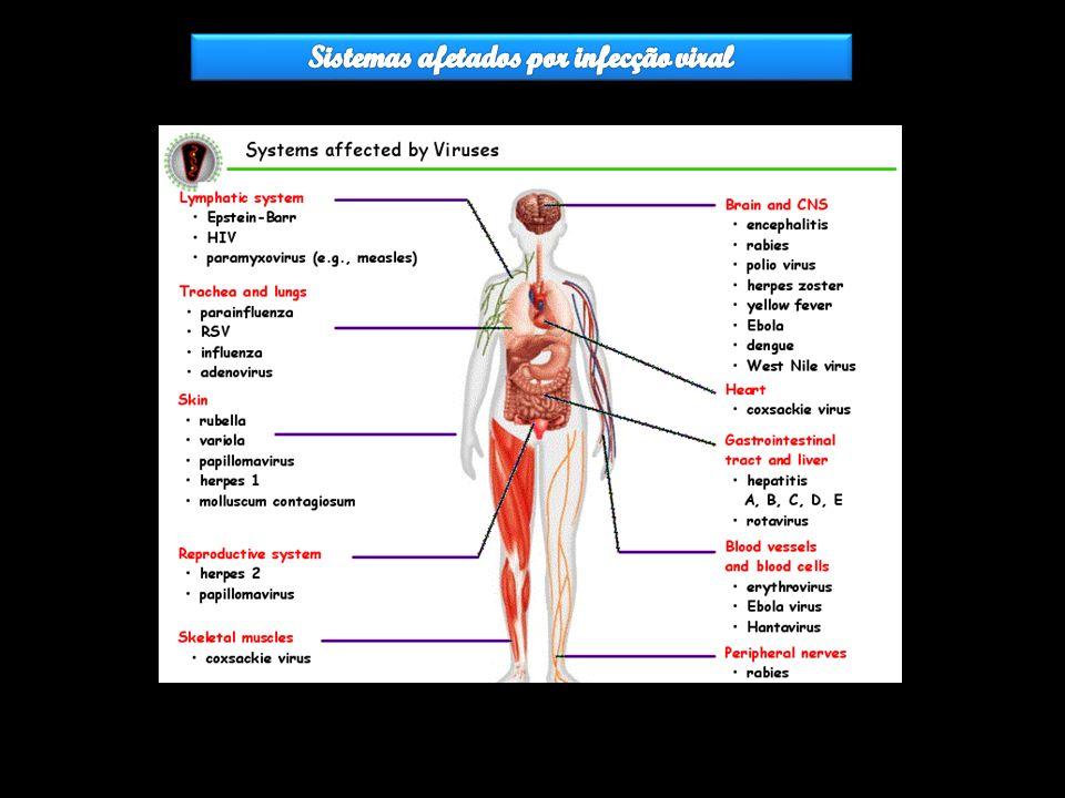 Sistemas afetados por infecção viral