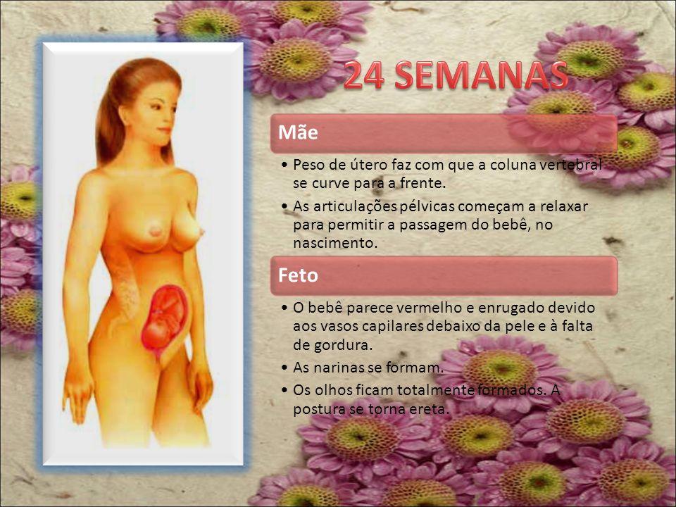 24 SEMANAS Mãe. Peso de útero faz com que a coluna vertebral se curve para a frente.