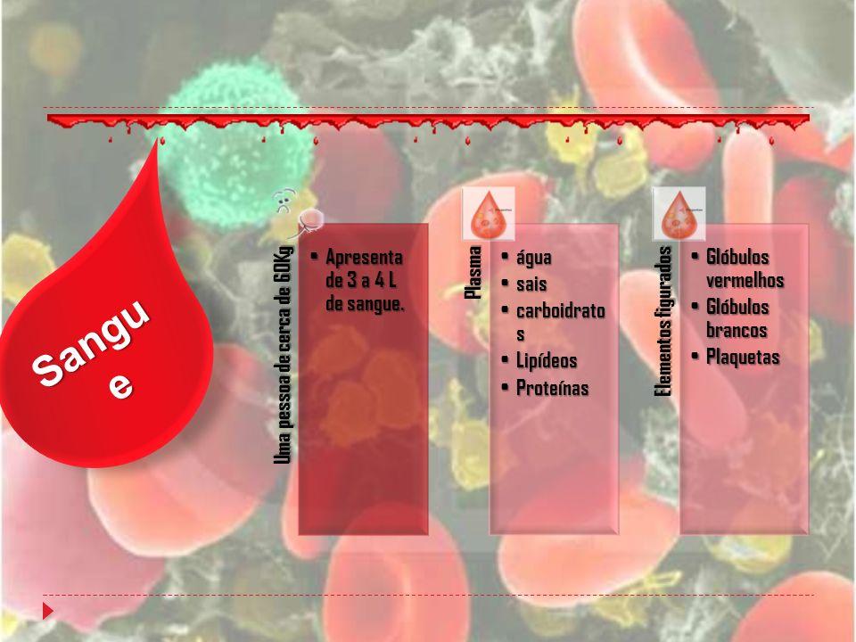 Sangue Uma pessoa de cerca de 60Kg Apresenta de 3 a 4 L de sangue.
