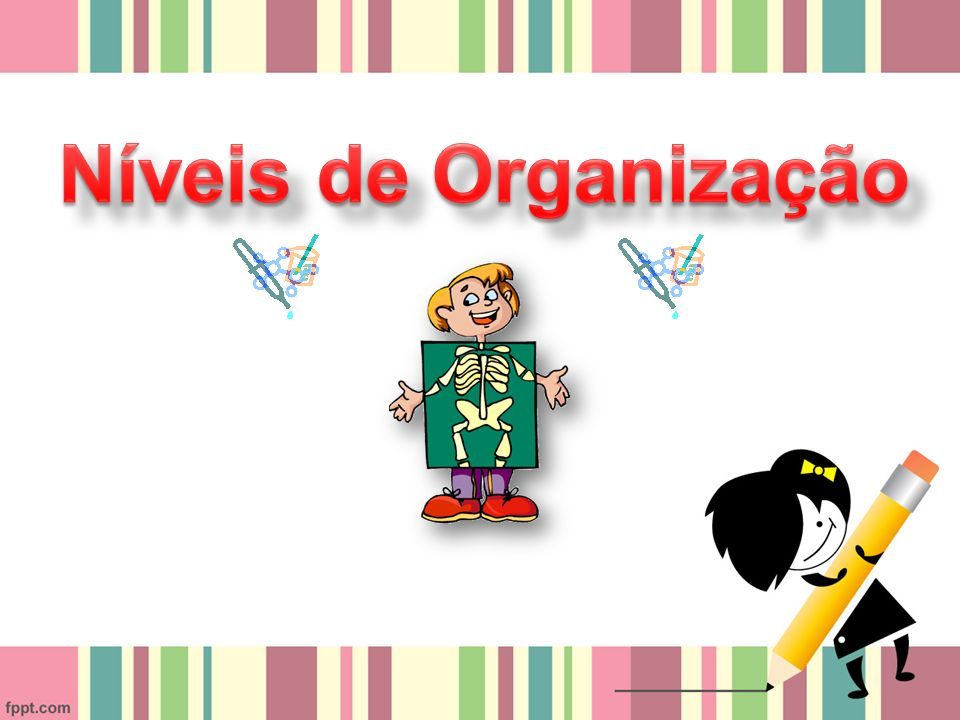 Níveis de Organização