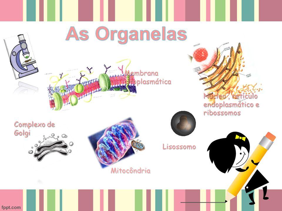 As Organelas Membrana citoplasmática