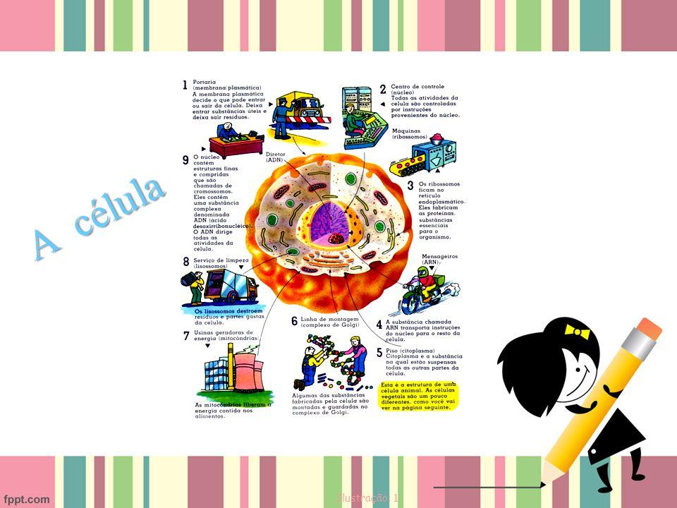 A célula Ilustração: 1
