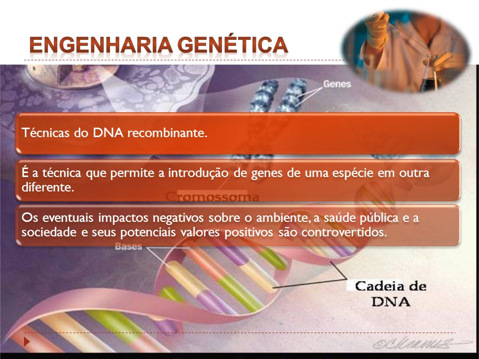 Engenharia Genética Técnicas do DNA recombinante.