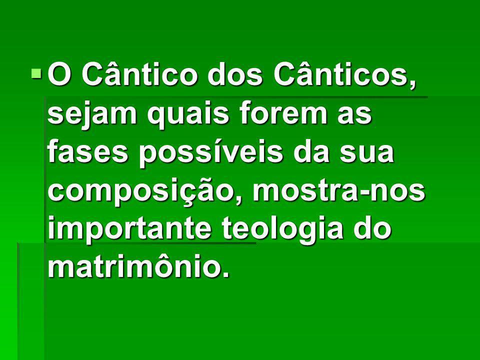 O Cântico dos Cânticos, sejam quais forem as fases possíveis da sua composição, mostra-nos importante teologia do matrimônio.