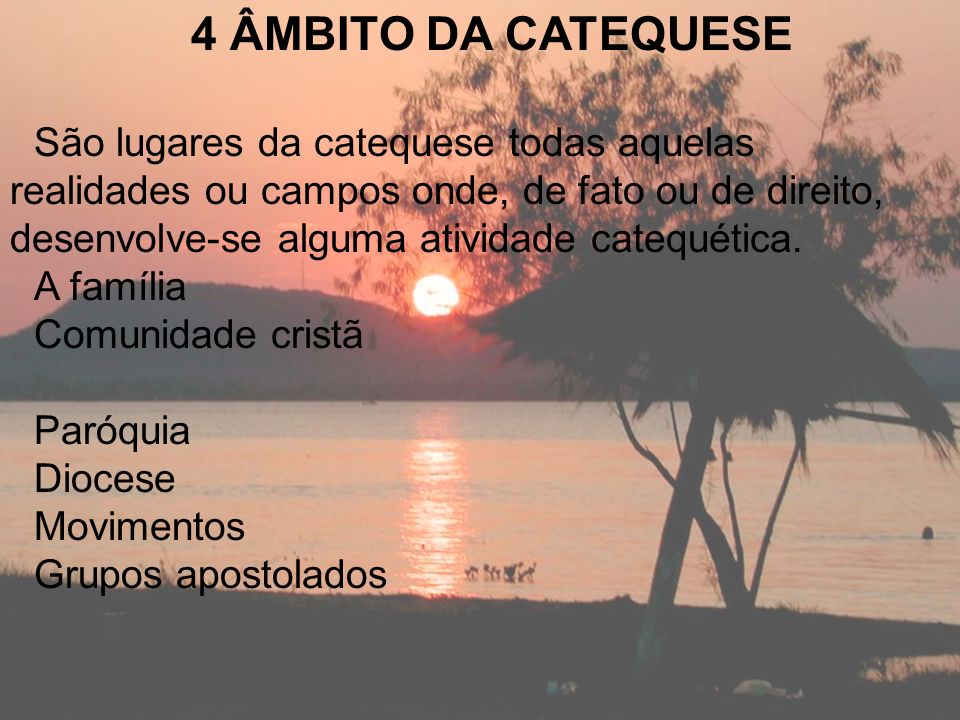 4 ÂMBITO DA CATEQUESE