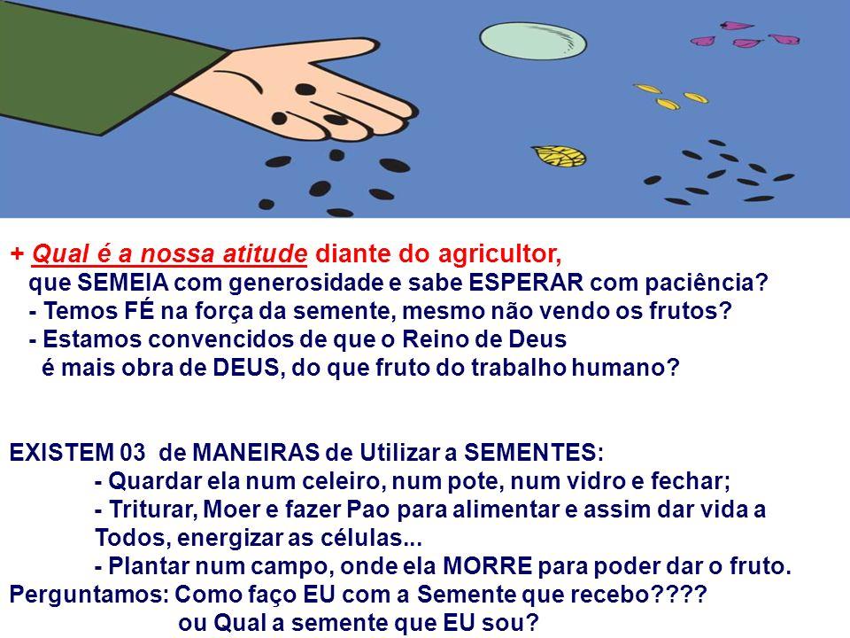 + Qual é a nossa atitude diante do agricultor,