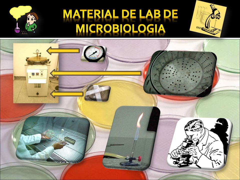 MATERIAL DE LAB DE MICROBIOLOGIA