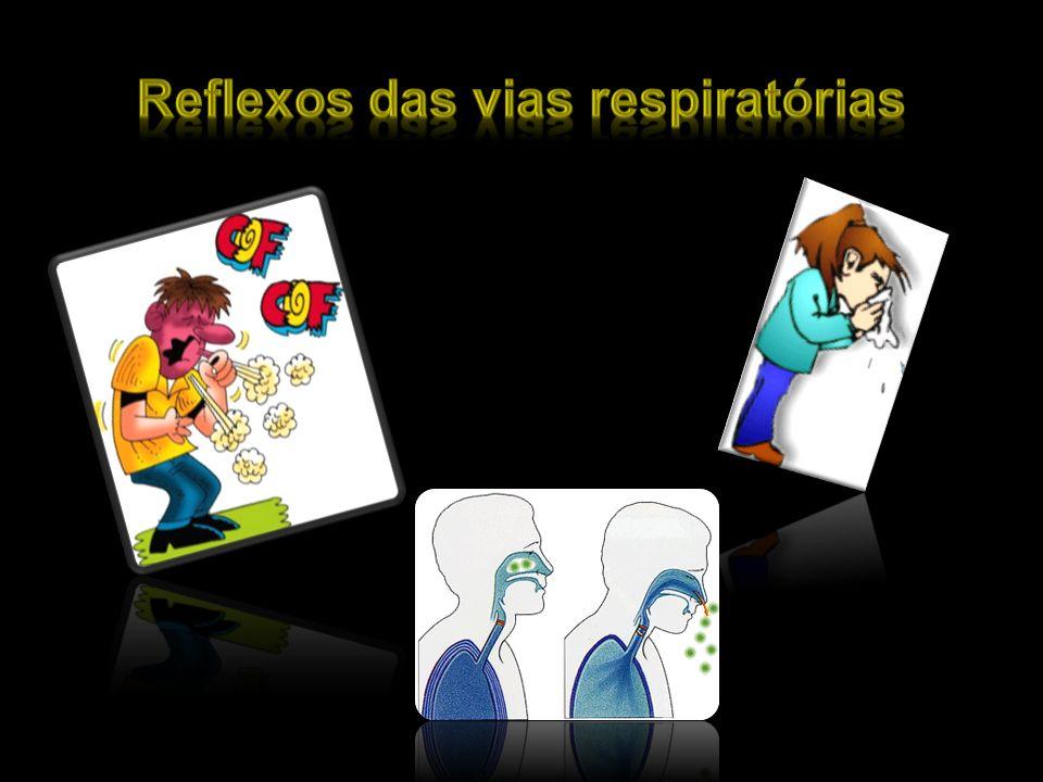 Reflexos das vias respiratórias