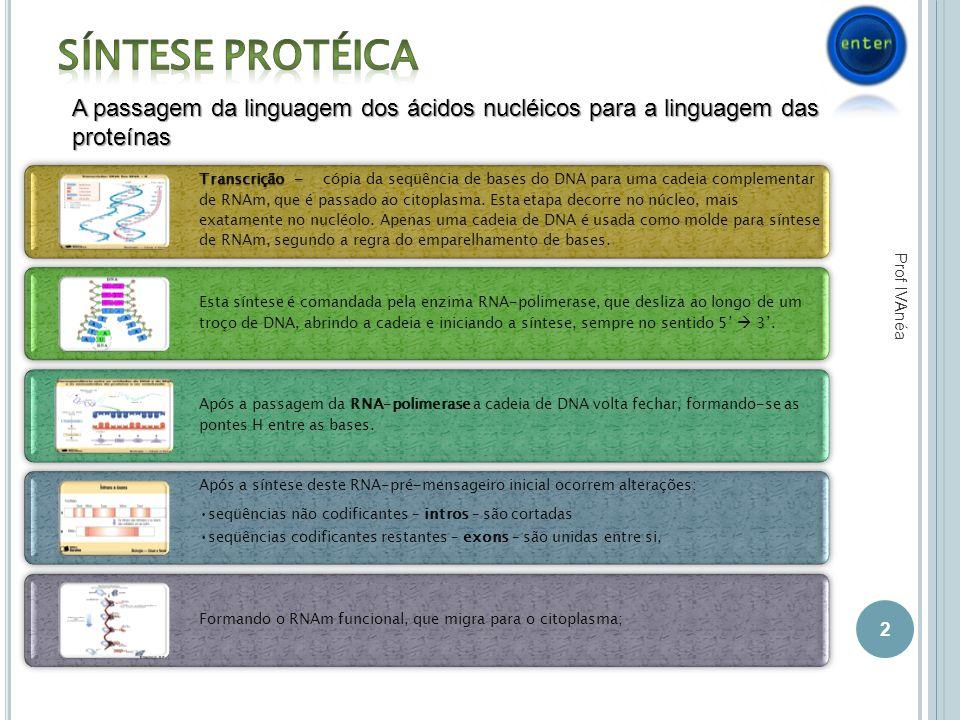 Síntese Protéica A passagem da linguagem dos ácidos nucléicos para a linguagem das proteínas.