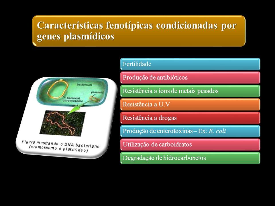 Características fenotípicas condicionadas por genes plasmídicos
