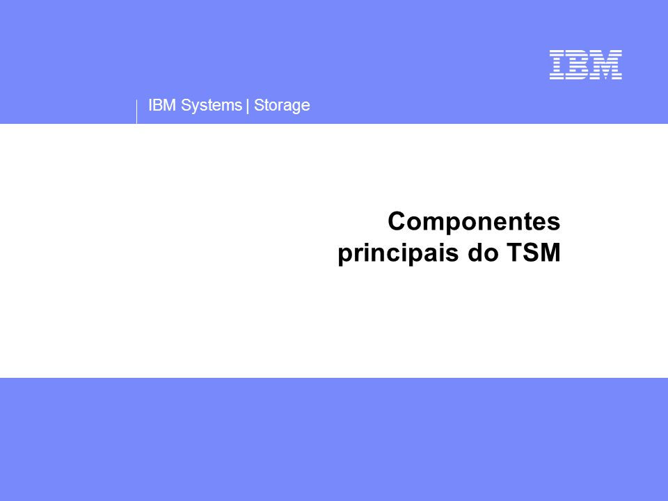 IBM Systems | Storage Componentes principais do TSM
