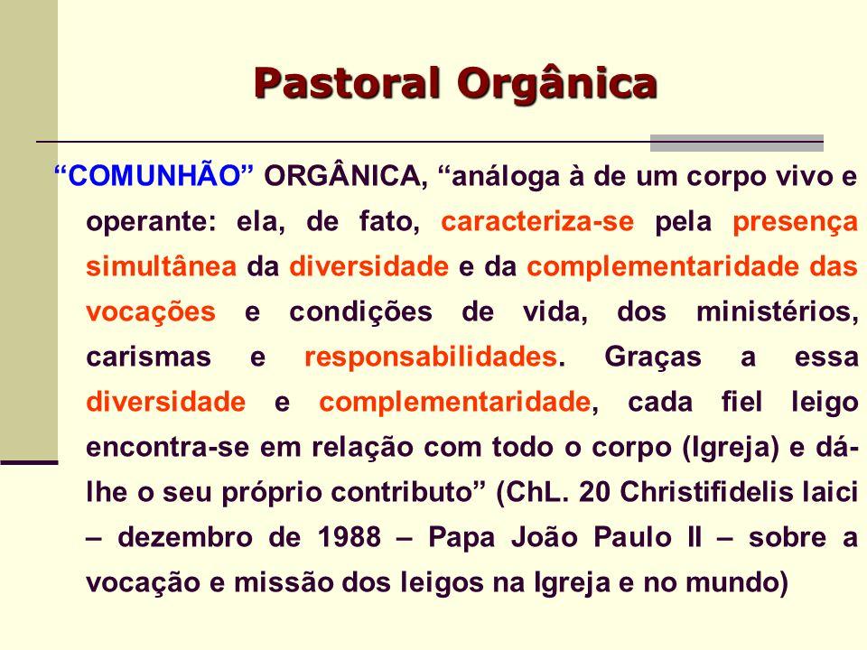 Pastoral Orgânica
