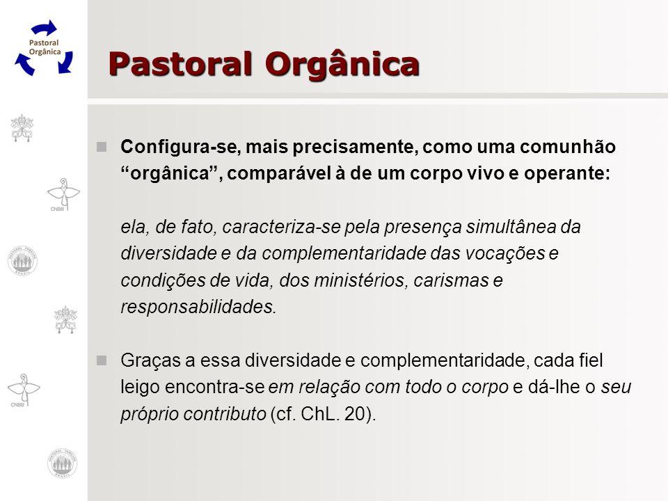 Pastoral OrgânicaConfigura-se, mais precisamente, como uma comunhão orgânica , comparável à de um corpo vivo e operante: