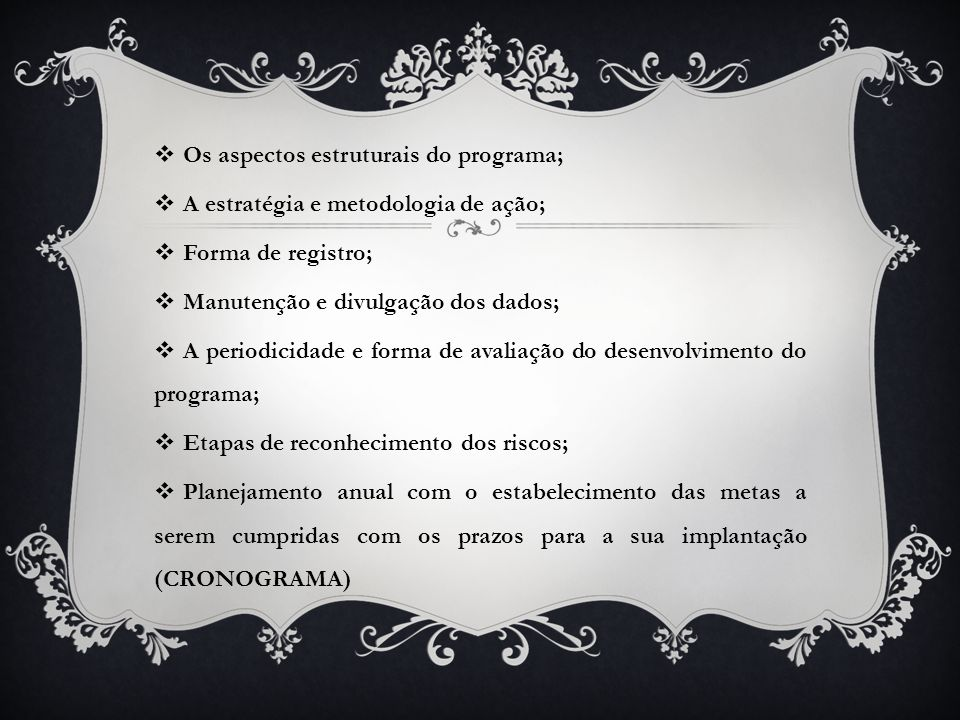 Os aspectos estruturais do programa;