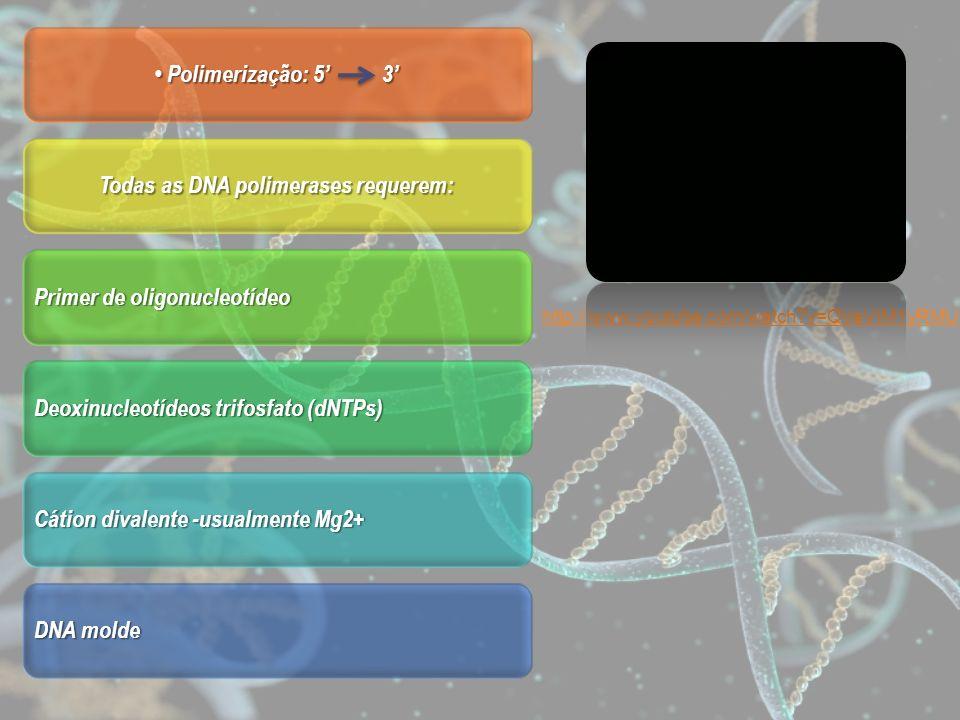 Todas as DNA polimerases requerem: