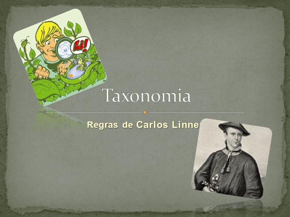 Regras de Carlos Linneu