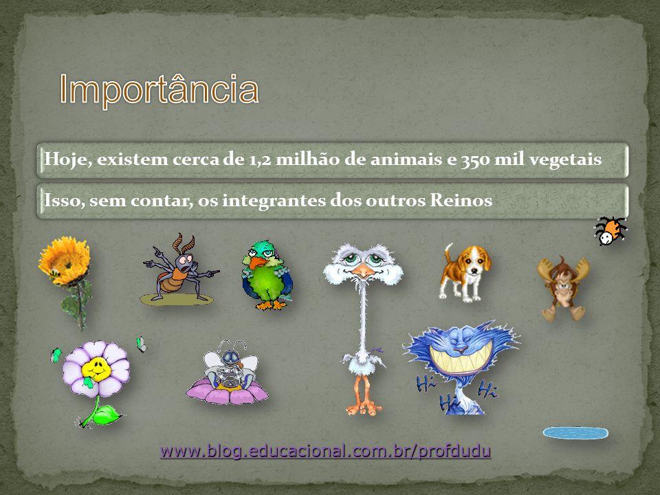 Importância www.blog.educacional.com.br/profdudu