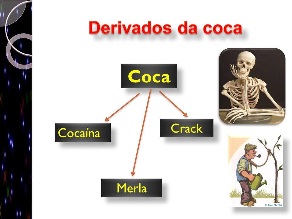 Derivados da coca Coca Cocaína Crack Merla