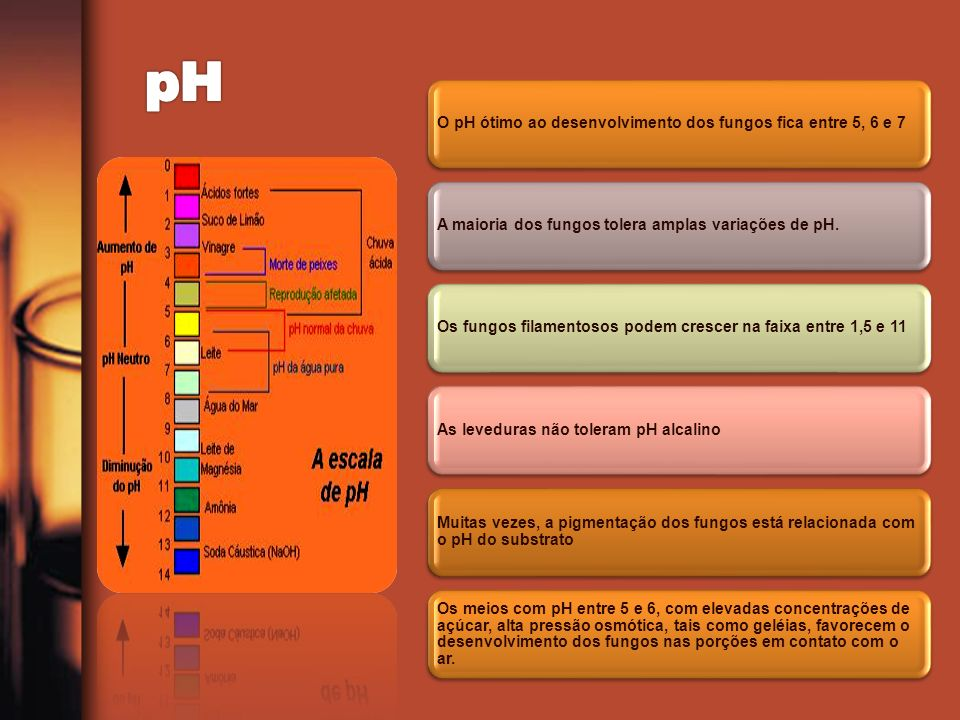 pH O pH ótimo ao desenvolvimento dos fungos fica entre 5, 6 e 7
