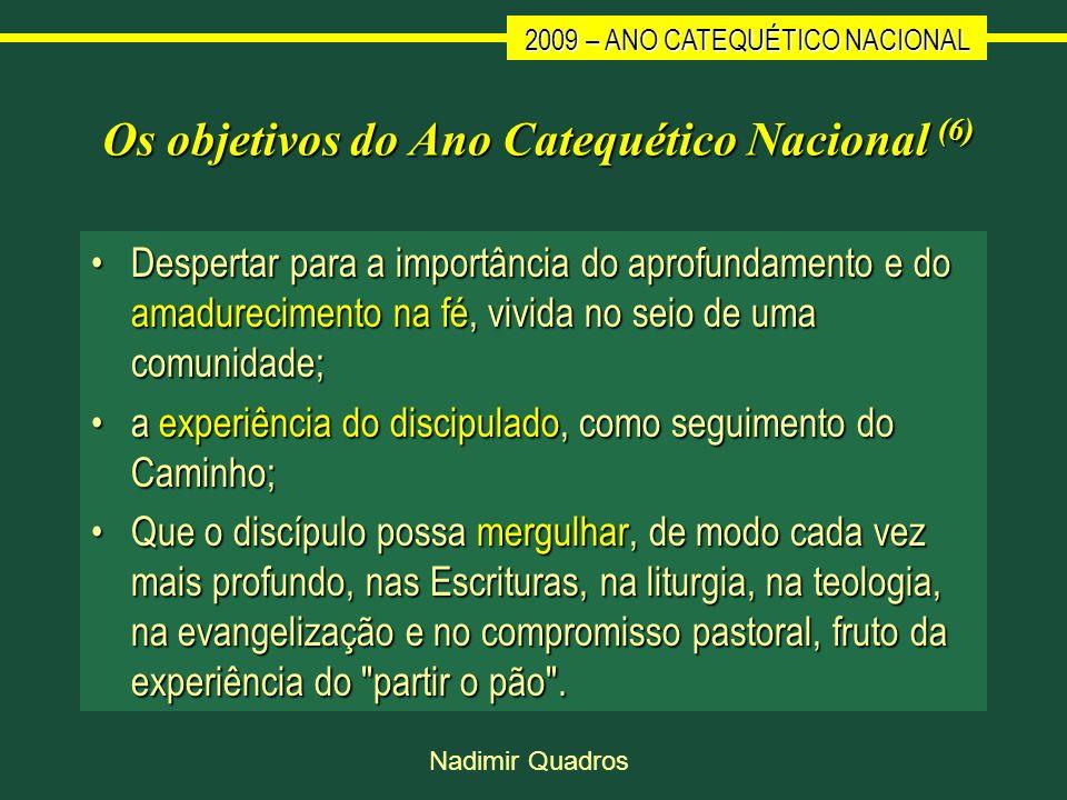Os objetivos do Ano Catequético Nacional (6)