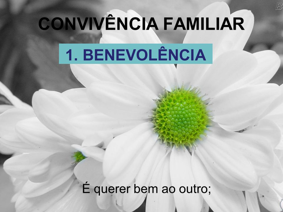 CONVIVÊNCIA FAMILIAR 1. BENEVOLÊNCIA É querer bem ao outro;