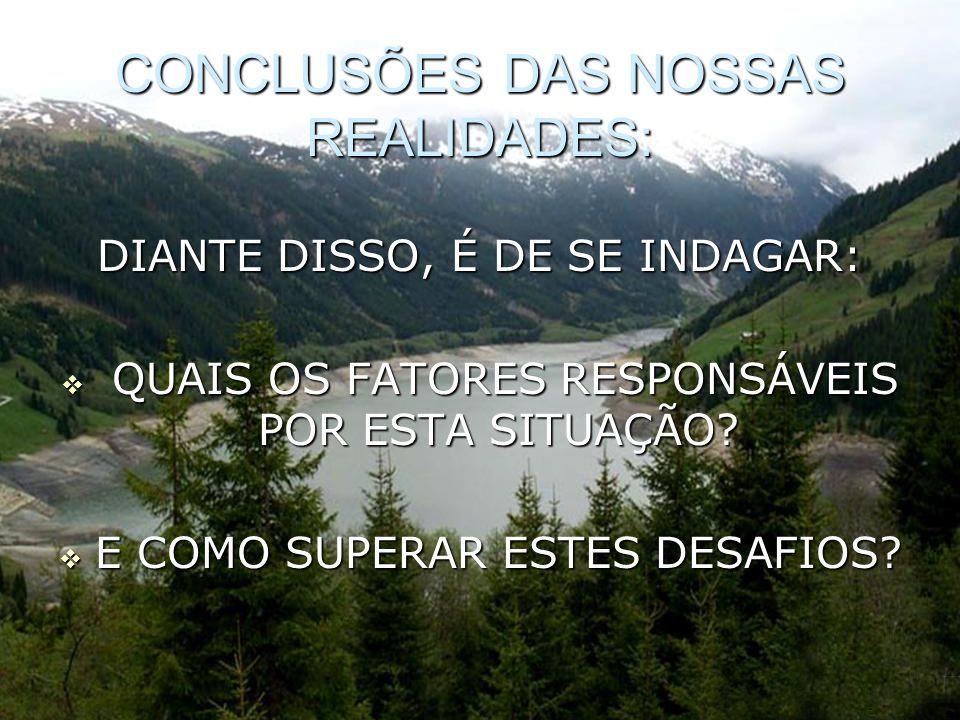 CONCLUSÕES DAS NOSSAS REALIDADES: