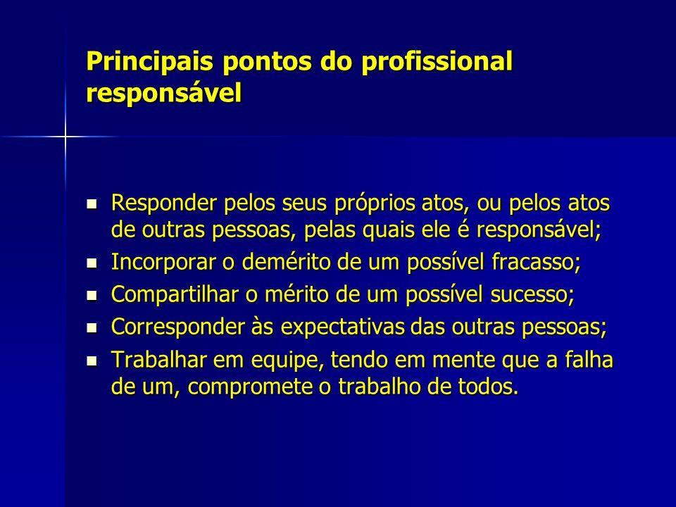 Principais pontos do profissional responsável